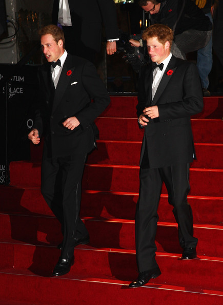 Prince Harry and Prince William at the Quantum of Solace Premiere 2008